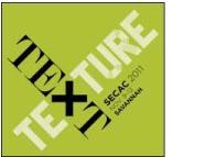 Text Texture / 2011 SECAC Conference