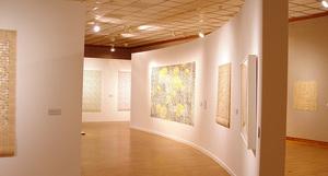 Papercuts @ Muskegon Museum of Art